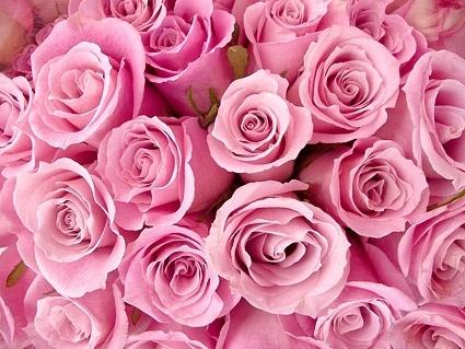 Solo per vere Pink Lover: 10 capi fashion di supertendenza